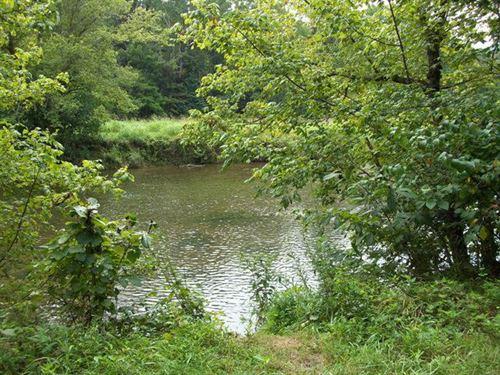 River Front Property Abingdon VA : Abingdon : Washington County : Virginia