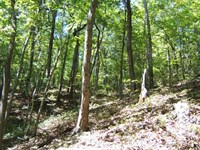 Mountain Land River Access Abingdon : Abingdon : Washington County : Virginia