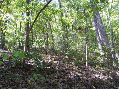 Private Recreational Property : Abingdon : Washington County : Virginia
