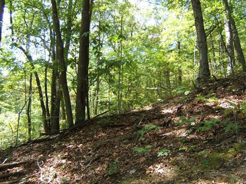 Private Mountain Paradise Abingdon : Abingdon : Washington County : Virginia