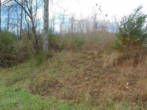 103 Residential Industrial Acres : Bassett : Henry County : Virginia