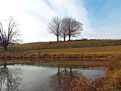 Beautiful Property Ready to Build : Bluefield : Tazewell County : Virginia