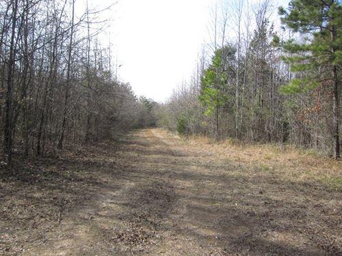 To The Lake We Go, Kerr Lake, VA : Boydton : Mecklenburg County : Virginia