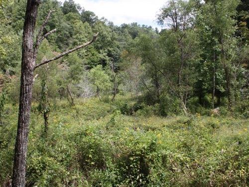 Affordable Wooded Recreational Land : Bristol : Washington County : Virginia