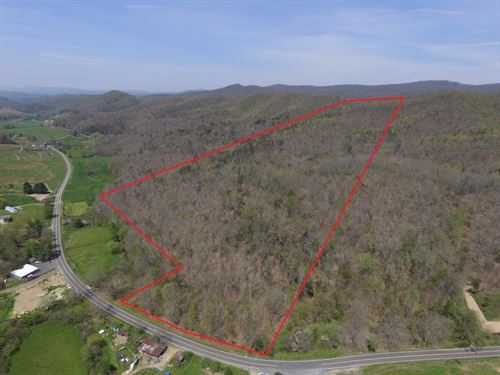 51 Wooded Acres in Ceres, VA : Ceres : Smyth County : Virginia