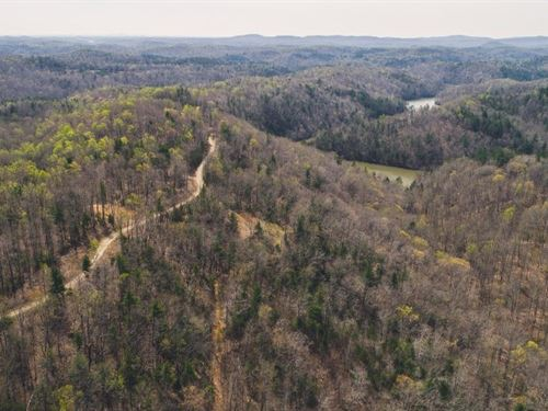 Land Near Philpott Lake in VA : Ferrum : Franklin County : Virginia