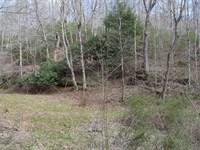 25 Acre Nature Retreat Mountains : Floyd : Floyd County : Virginia