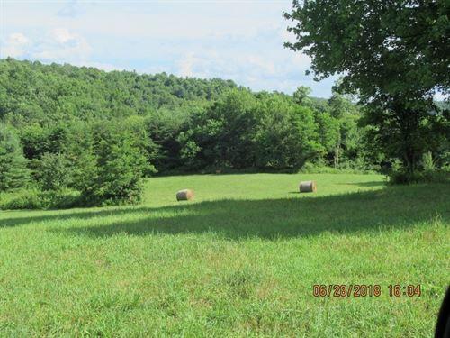 Floyd VA Farm Land, Joins Blue : Floyd : Virginia