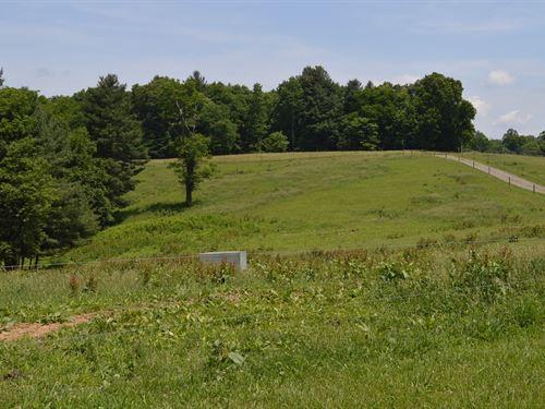 Beautiful Horse Farm Galax VA : Galax : Carroll County : Virginia