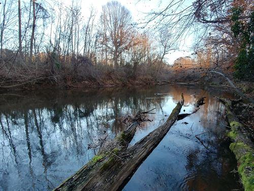 Land Java, VA With Mountain Views : Gretna : Pittsylvania County : Virginia