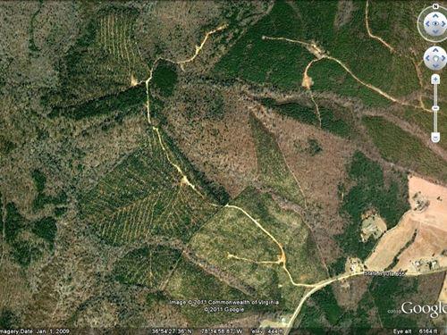 Wooded Acreage : Kenbridge : Lunenburg County : Virginia