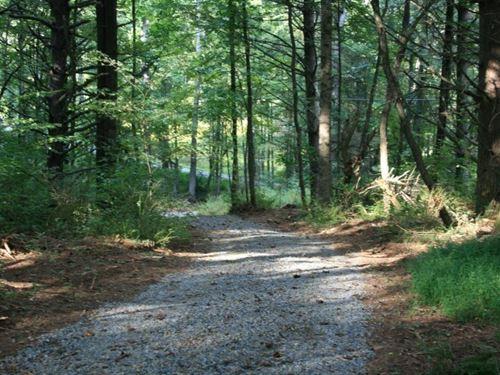 6.74 Acres Land Carroll County, VA : Laurel Fork : Carroll County : Virginia