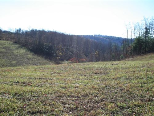 5.25 Acres Land Patrick County : Meadows Of Dan : Patrick County : Virginia