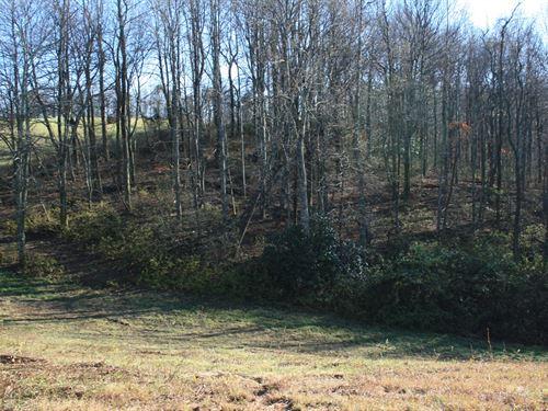 14.32 Acres Land Patrick County, VA : Meadows Of Dan : Patrick County : Virginia