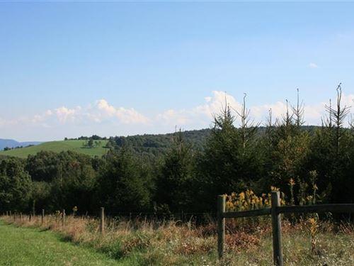 28.75 Acres Land Patrick County, Va : Meadows Of Dan : Patrick County : Virginia