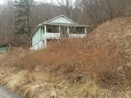 14 Wooded Acres Older Home North : North Tazewell : Tazewell County : Virginia