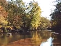 123 Acres Recreation Property Along : Riceville : Pittsylvania County : Virginia