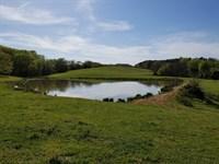 Rare Opportunity, Large Acreage : Ringgold : Pittsylvania County : Virginia