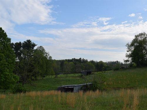 Open Pasture Land in Willis VA : Willis : Floyd County : Virginia
