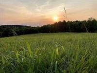 Acreage For Sale in Willis VA : Willis : Floyd County : Virginia