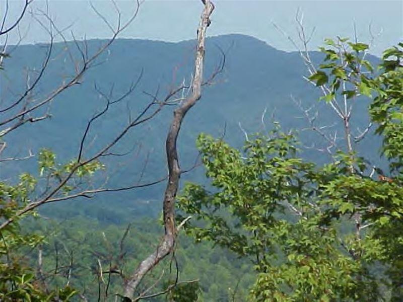 106 Acres Land Patrick County : Woolwine : Patrick County : Virginia