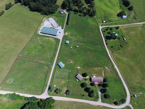 Mini Horse Farm 2 Houses : Wytheville : Wythe County : Virginia
