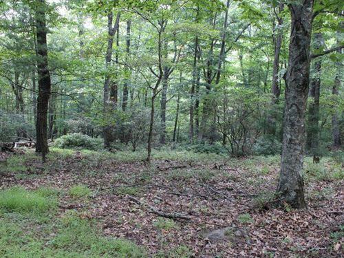 Lot 106 Blue Ridge Mountain : Independence : Grayson County : Virginia
