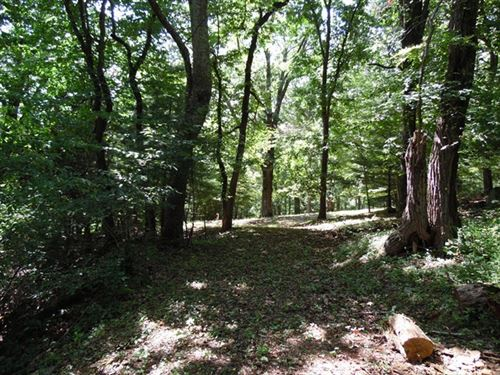 Lot For Sale in Southwest Virginia : Independence : Grayson County : Virginia