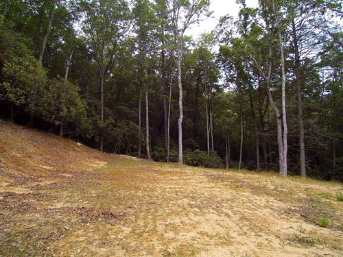 5 Acre Mountain Tract For Sale : Independence : Grayson County : Virginia