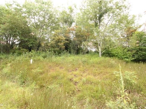 6.06 Acres Gated Community Blue : Independence : Grayson County : Virginia