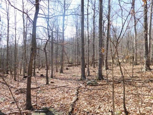 10.29 Acres in Augusta, WV : Augusta : Hampshire County : West Virginia