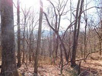 Land For Sale In Capon Bridge, WV : Capon Bridge : Hampshire County : West Virginia