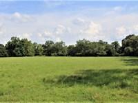 179 Acre Multi Purpose Farm : Clayhatchee : Dale County : Alabama