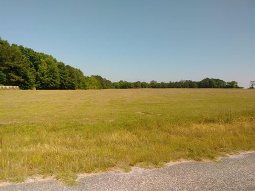 132 Acres in Dale County, Al : Midland City : Dale County : Alabama