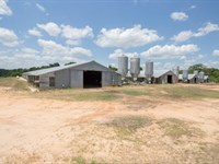 6.1 Acres Old Poultry Houses : Ozark : Dale County : Alabama