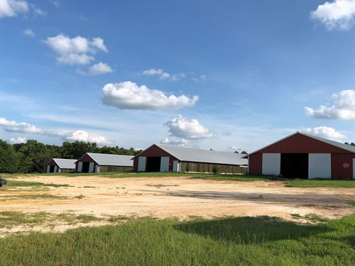 14 Acres/Pond 4 40X400 Houses : Samson : Geneva County : Alabama