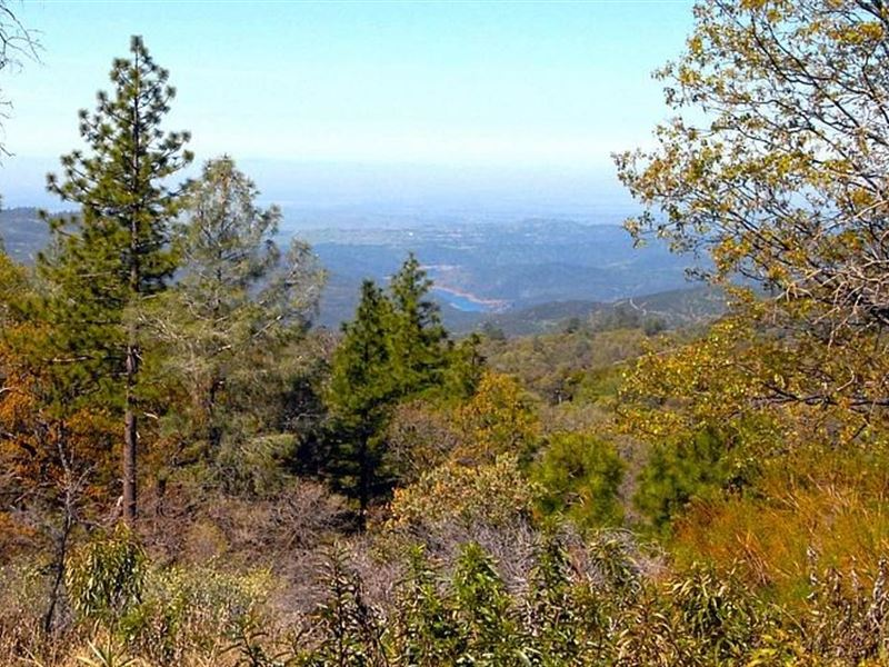 Yosemite View CA Ranch, Mariposa : Coulterville : Mariposa County : California