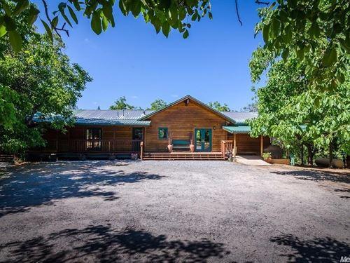 Horse Property Walnut Farm : West Point : Calaveras County : California