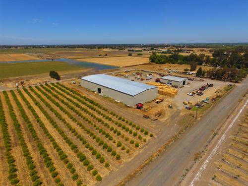 Yolo County, CA Farm Land For Sale : Woodland : Yolo County : California