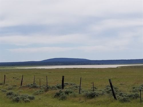 90 Acres, Springs/Views Goose Lake : Davis Creek : Modoc County : California