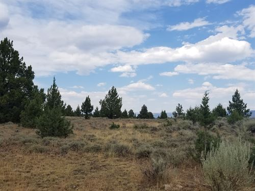 Waterfront Property 20 Acres : Madeline : Lassen County : California