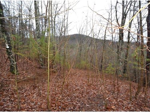 N, Georgia Mountain Land, 80+ Acres : Jasper : Pickens County : Georgia