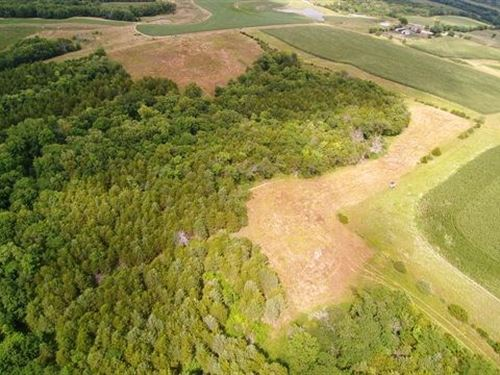 Wapello County Farm For Sale : Blakesburg : Wapello County : Iowa