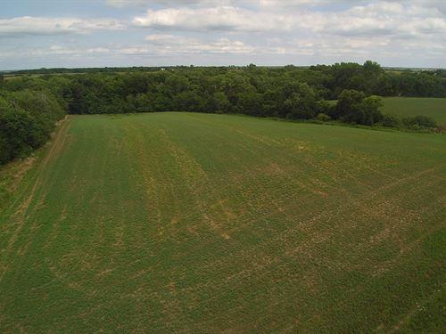 Southern Iowa Affordable 32 ac M/L : Blakesburg : Wapello County : Iowa