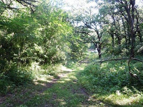 Timber Ground Loess Hills Iowa : Pisgah : Harrison County : Iowa