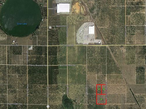 Frostproof 85 Acres Citrus Grove : Frostproof : Polk County : Florida