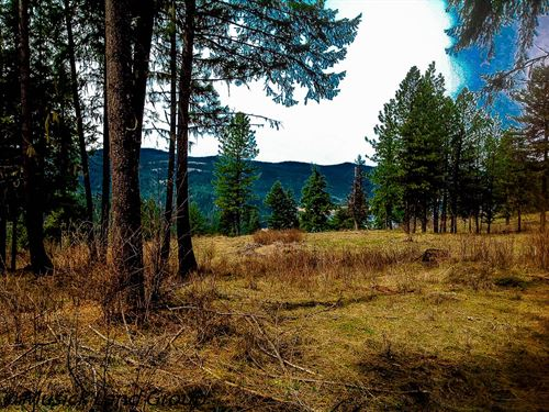 Recreational Building Lots Orofino : Orofino : Clearwater County : Idaho