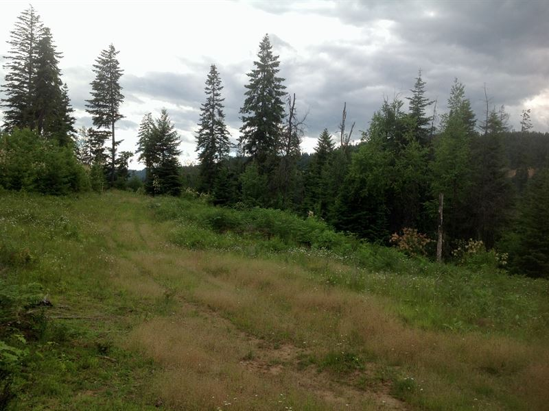 Building Site Close to Orofino : Orofino : Clearwater County : Idaho