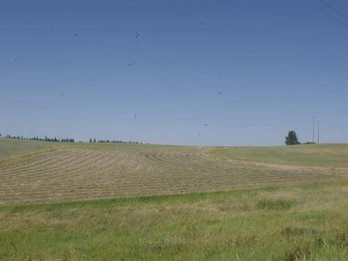 Tillable Grazing Land Weippe, Idaho : Weippe : Clearwater County : Idaho