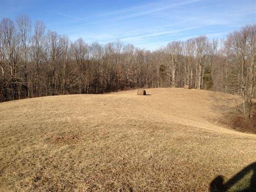 100 Acres, Albany, Kentucky : Albany : Clinton County : Kentucky